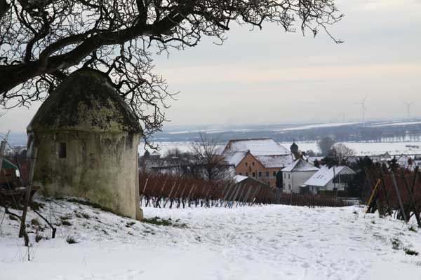 Dalsheim in winter