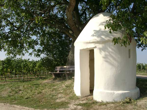 Small hut in the vineyards